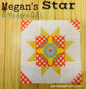 Megan's Star_thumb[3]
